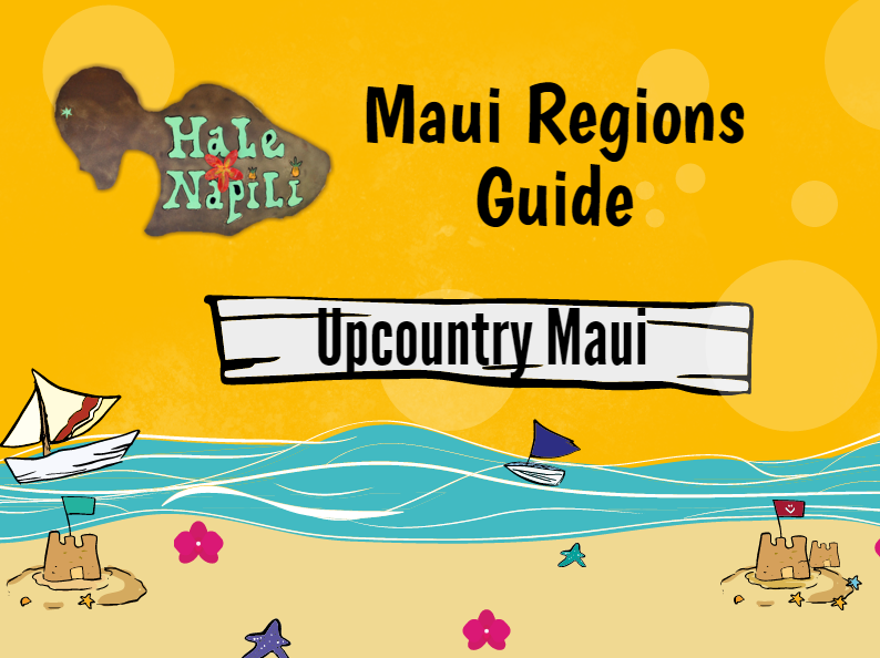 Upcountry Maui Info Graphic