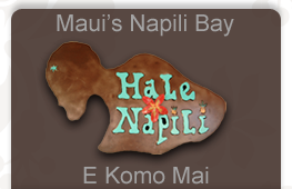 Visit out Homepage at Hale Napili