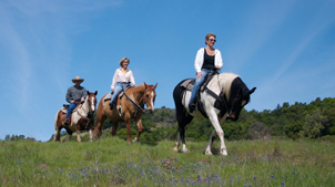 Three people riding horseback on a trail