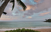 View our Live Beach Cam